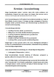 Konsulentbesøg, Havedam - CB Vand & Miljø